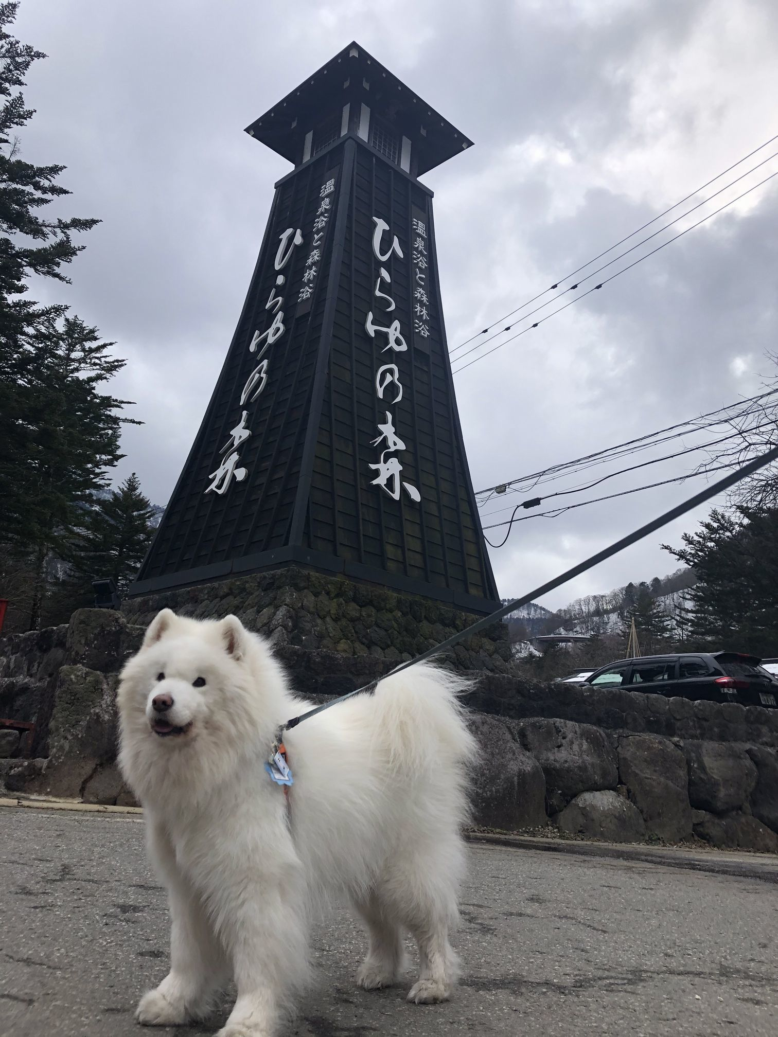 2020年冬 群馬~岐阜~石川県旅行 その2_f0128542_00484389.jpg
