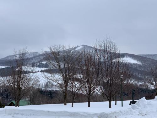 北海道 スキー 2日目❗️_a0044162_06450914.jpg