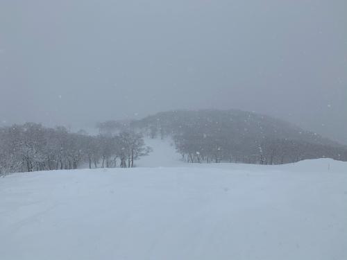 北海道 スキー 3〜4日目❗️_a0044162_19184720.jpg
