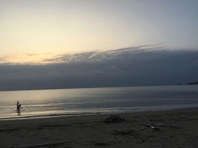 和歌山の海でボランティア&とらおくん~♪_e0123286_18462108.jpg