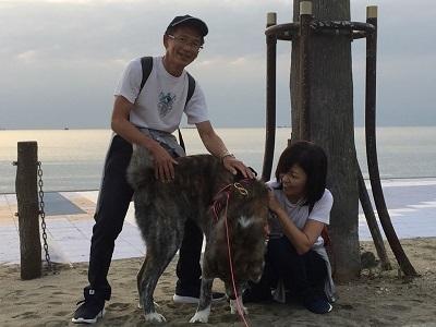 和歌山の海でボランティア&とらおくん~♪_e0123286_18514376.jpg
