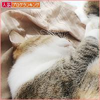 遺された猫_a0389088_17524757.jpg