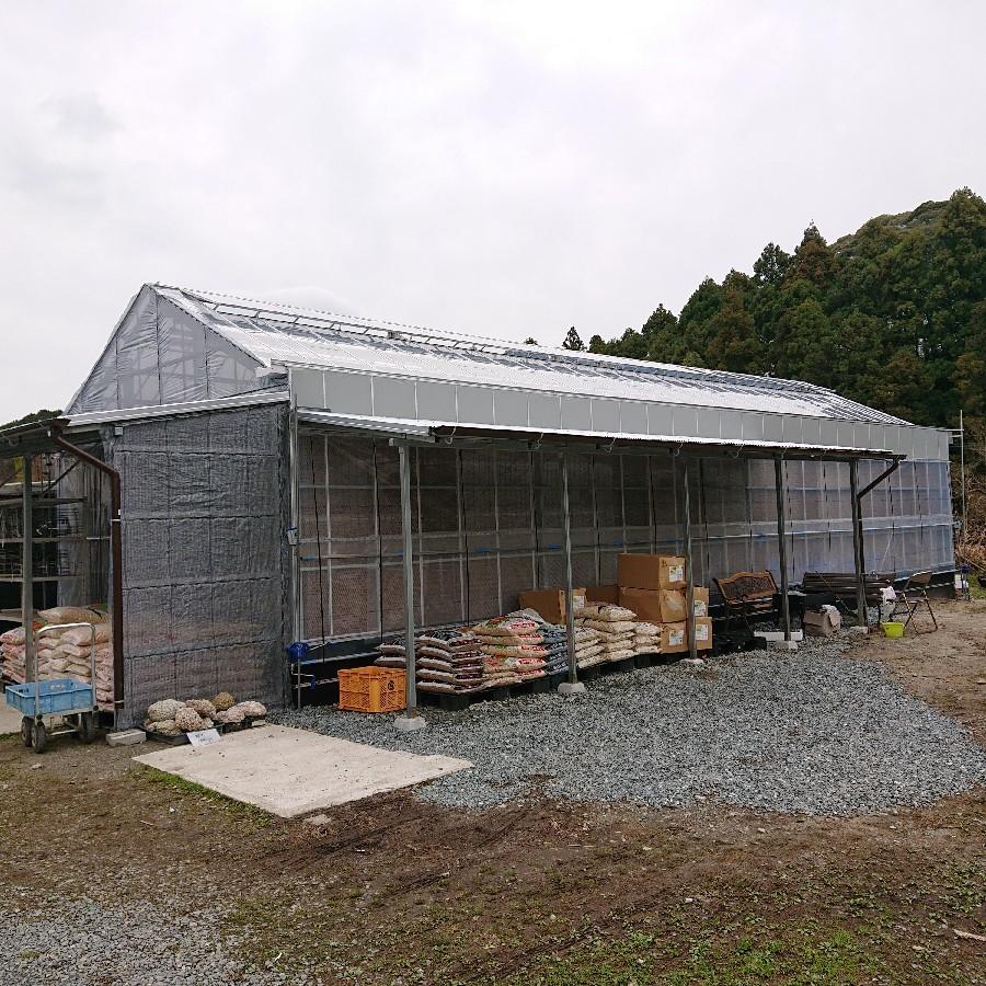 栽培所完成しました_f0356792_12591514.jpg