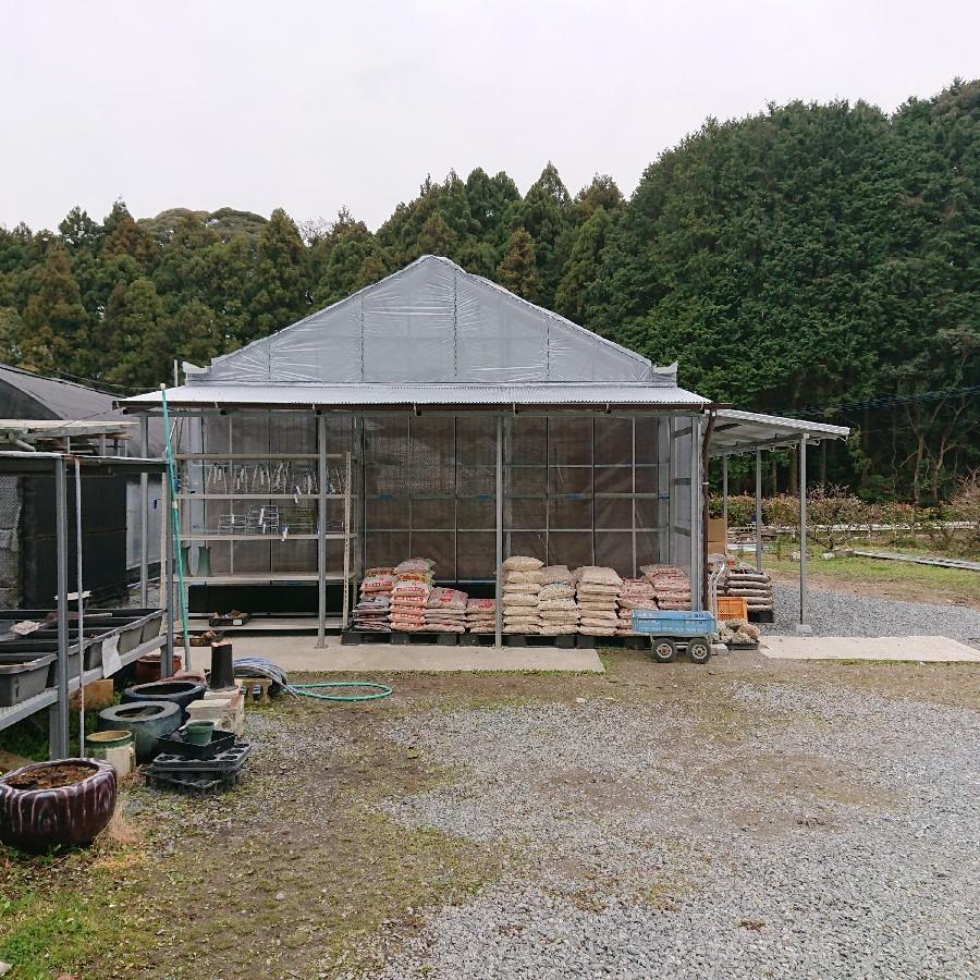 栽培所完成しました_f0356792_12591572.jpg