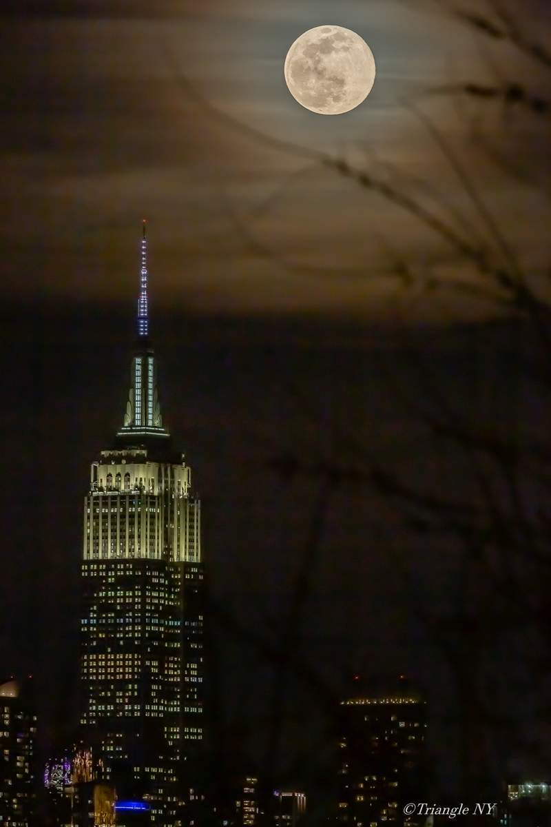 First Super Moon on March 9, 2020   -Super Worm Moon-_a0274805_11131464.jpg