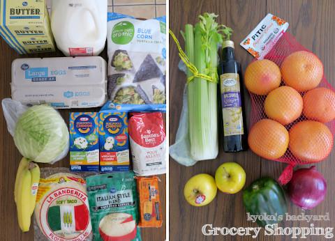 週1の食材まとめ買いと献立(2-6)_b0253205_10323913.jpg