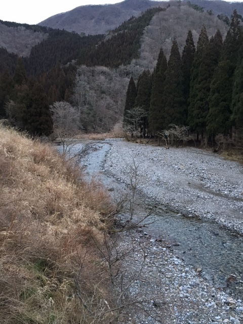 今年の渓流も一ヶ月早い_e0150006_17001612.jpg