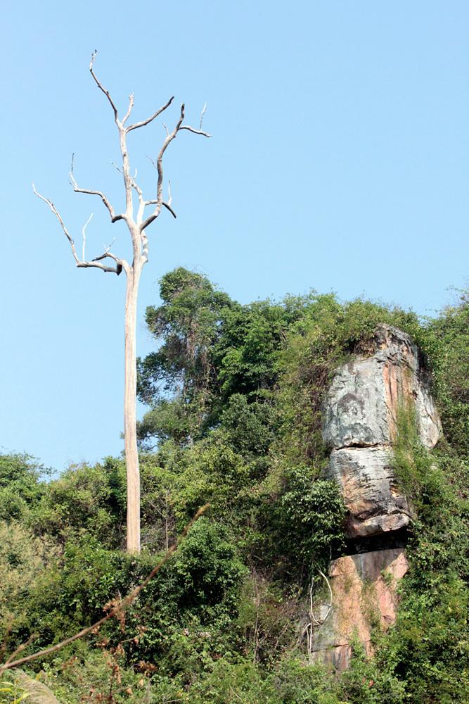 クバルスピアン2, Kbal Spean クーレン山 -Siem Reap-2012-_d0011713_23581768.jpg