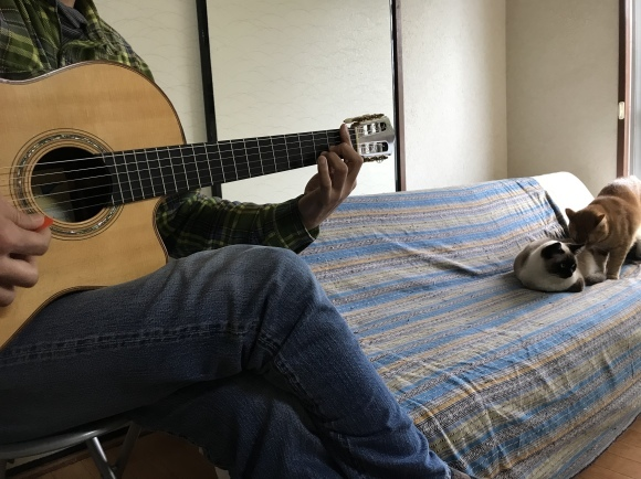 猫ギター 2020.3.10_d0239615_15071708.jpeg