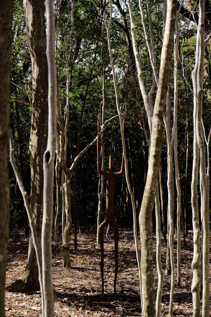 霧島アートの森 ③_f0315034_15013381.jpeg