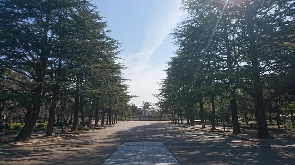 鶴舞公園へ行ってきました♪_f0373339_15061664.jpg