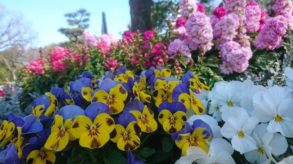鶴舞公園へ行ってきました♪_f0373339_15095439.jpg