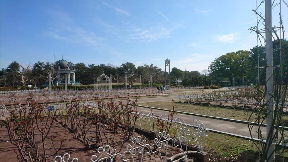 鶴舞公園へ行ってきました♪_f0373339_15251552.jpg