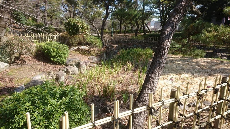 鶴舞公園へ行ってきました♪_f0373339_15262337.jpg