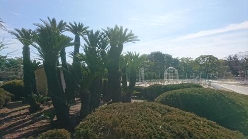 鶴舞公園へ行ってきました♪_f0373339_15412908.jpg