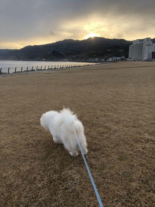 2020年冬 群馬~岐阜~石川県旅行 その3_f0128542_02154022.jpg