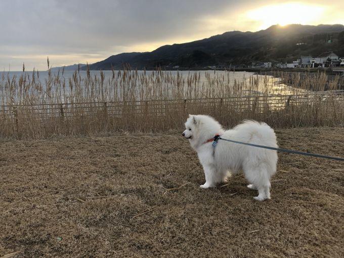 2020年冬 群馬~岐阜~石川県旅行 その3_f0128542_02171404.jpg