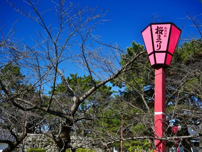 和歌山便り  2020-03-12 00:00_b0093754_20333872.jpg