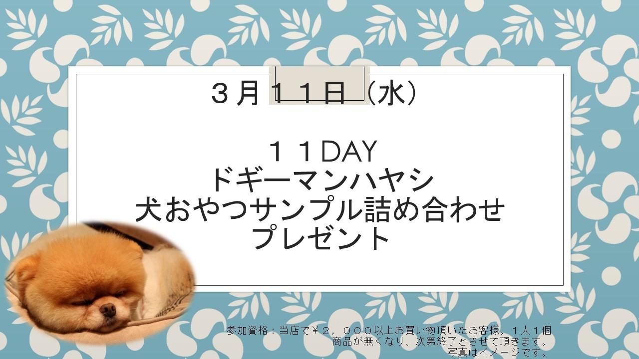 200310 11DAYイベント告知_e0181866_08595529.jpg