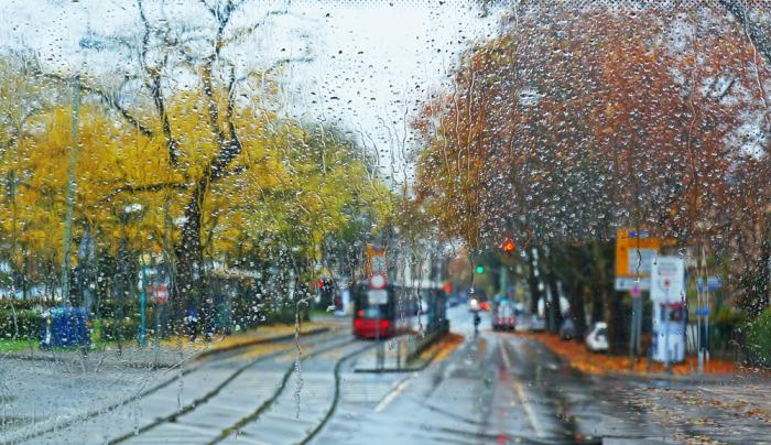 It rains today_a0153871_21262262.jpg