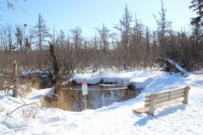 冬のトレイル 2_c0353373_04384963.jpg