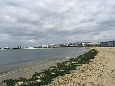 マーブルビーチで ぶらり~お散歩♪_e0123286_19175762.jpg