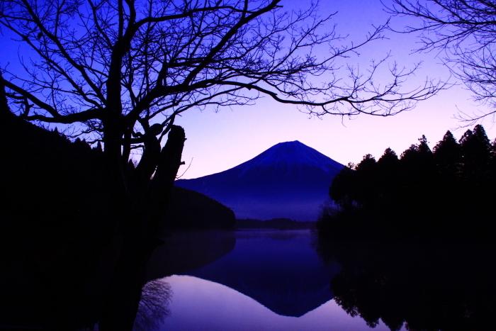令和2年3月の富士 (2) 田貫湖の逆さ富士_e0344396_22110207.jpg