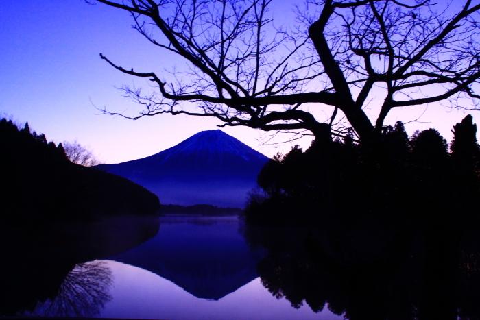 令和2年3月の富士 (2) 田貫湖の逆さ富士_e0344396_22110222.jpg