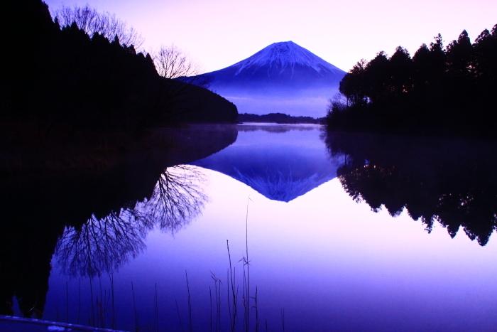 令和2年3月の富士 (2) 田貫湖の逆さ富士_e0344396_22110252.jpg