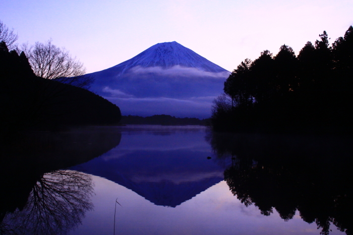 令和2年3月の富士 (2) 田貫湖の逆さ富士_e0344396_22110383.jpg