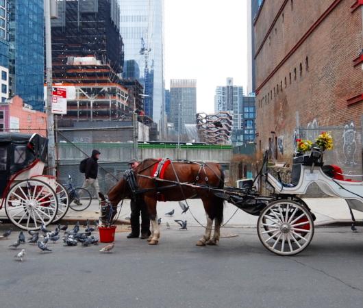 近未来都市が背景の伝統的なニューヨークの朝の風景_b0007805_06175433.jpg