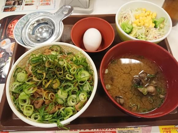 3/11 ねぎ玉牛丼並しじみ汁サラダセット¥760@すき家_b0042308_19025264.jpg