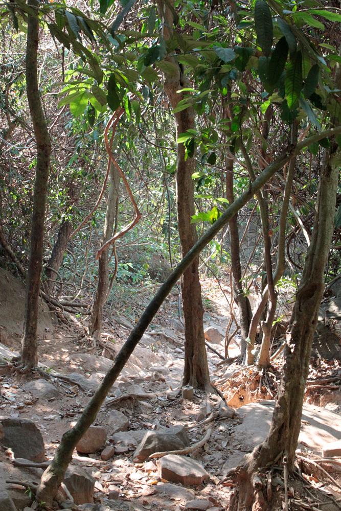 クバルスピアン3, Kbal Spean 源流へ -Siem Reap-2012-_d0011713_00352999.jpg