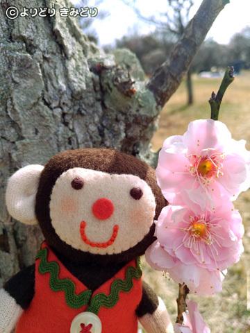 春はそこまで_b0044915_10482609.jpg