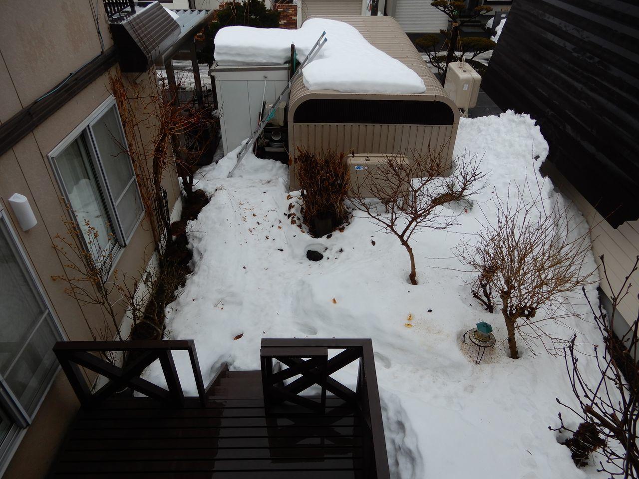 札幌の公式積雪深はあまり減りませんが東区は激減り_c0025115_21381806.jpg