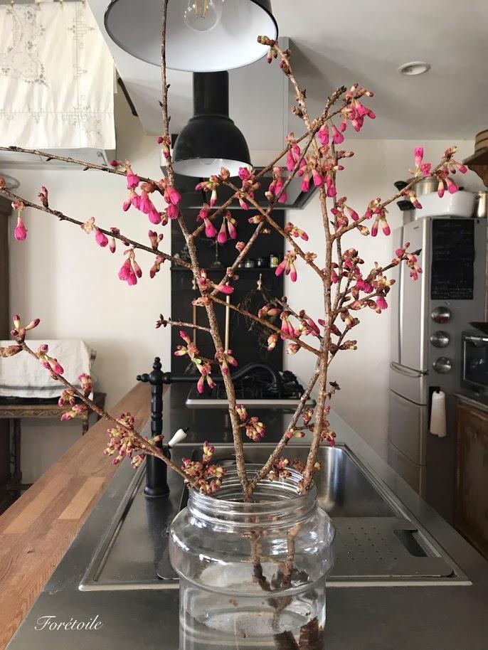 桜の枝_f0377243_14280986.jpg