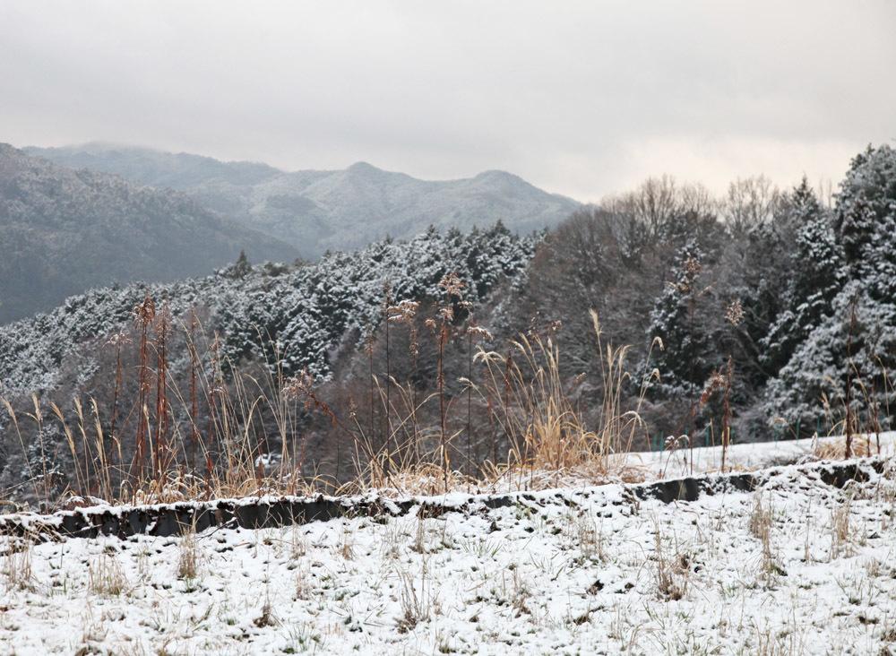 宇陀市 額井(ぬかい) 雪景色_c0108146_21355272.jpg
