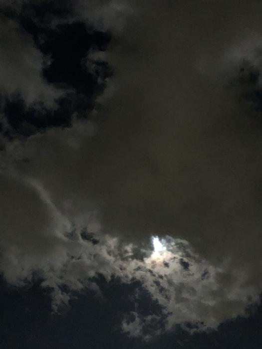 2020年3月 乙女座の満月と河津桜_d0105967_01273294.jpeg