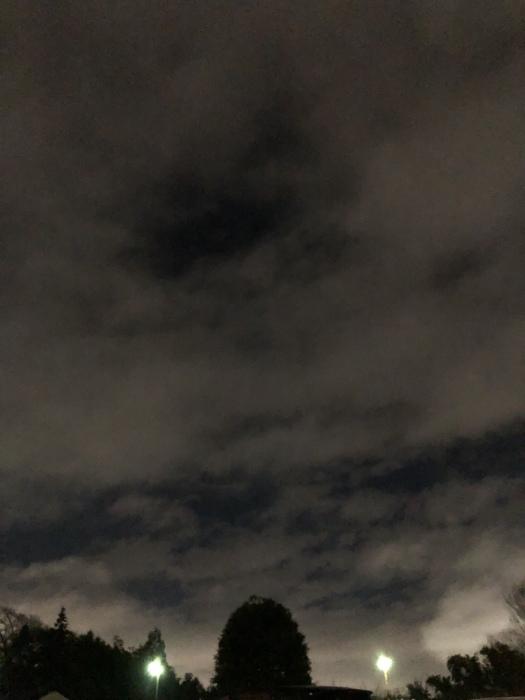 2020年3月 乙女座の満月と河津桜_d0105967_01371366.jpeg