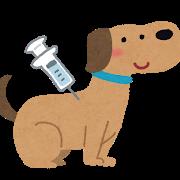 今年の目黒区の狂犬病予防注射について_e0367571_22184142.png