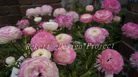 ファイルで花束~❤_f0029571_15492159.jpg