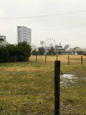 雨のお散歩_e0355177_13044866.jpg