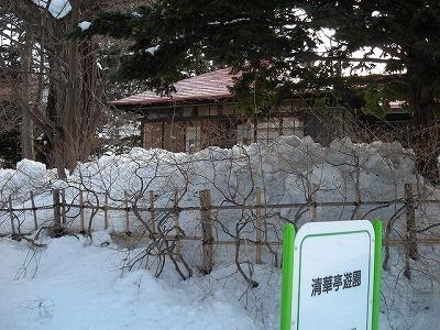 サクシュコトニ川の冬-2020-(1)_f0078286_10221267.jpg