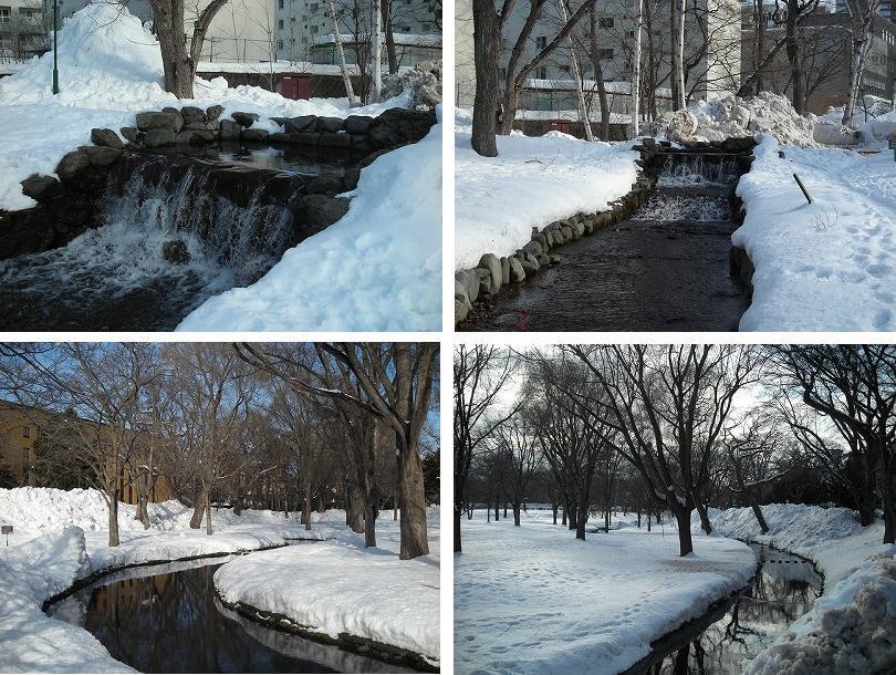 サクシュコトニ川の冬-2020-(1)_f0078286_10224260.jpg