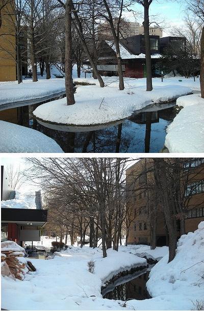 サクシュコトニ川の冬-2020-(1)_f0078286_10231115.jpg