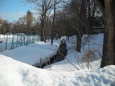 サクシュコトニ川の冬-2020-(1)_f0078286_10234556.jpg