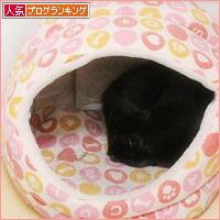 猫エイズと白血病・・・思い出の猫ベッド_a0389088_03321770.jpg