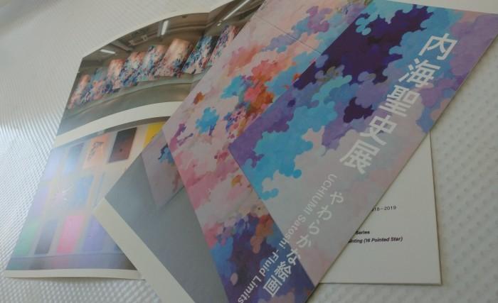 上野の森美術館ギャラリー「やわらかな絵画」カタログ_f0082794_18253632.jpg