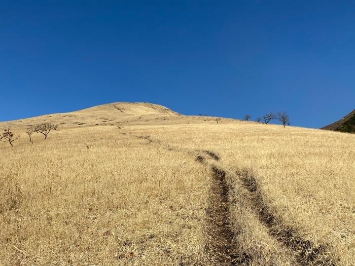 休みがあったら山登りin由布院-冬・由布岳_f0232994_12103297.jpg