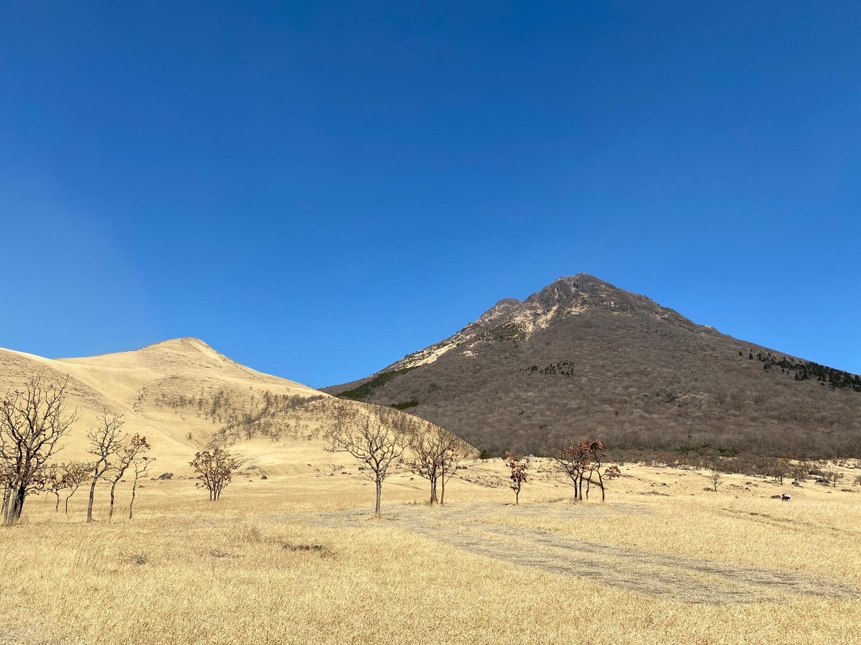 休みがあったら山登りin由布院-冬・由布岳_f0232994_12104442.jpg